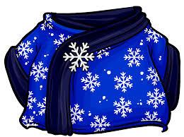 blizzard wizard robe club penguin wiki fandom powered by wikia