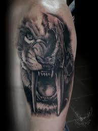 saber tooth tiger skull galleryhip com the hippest
