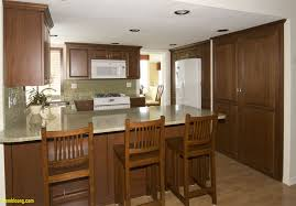 Discounted Kitchen Cabinet 100 Most Affordable Kitchen Cabinets Kitchen Cabinet