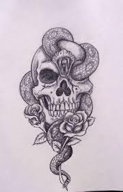 collection of 25 skull and snake design