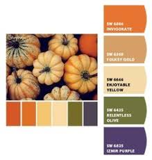terra brun paint color sw 6048 by sherwin williams view interior