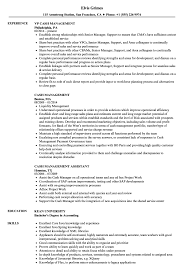 resume template for senior accountant duties ach drafts cash management resume sles velvet jobs