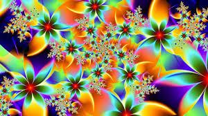 Flower Pictures Rainbow Flower Wallpaper Wallpapersafari