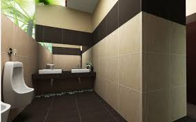 toilet interior design pictures