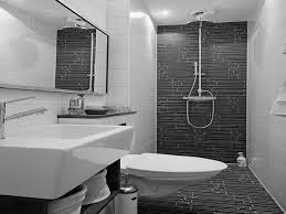black toilet grey black shower areas wall with steel faucet combined by white