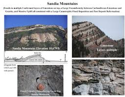 plate techtonics folds and gaps in geologic strata consistent