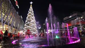 park water fountain palm trees and christmas lights highlight