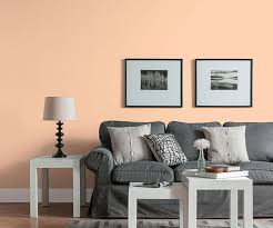 color of the month july 2015 bellini hung over living room
