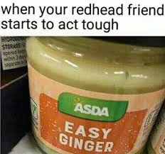 Ginger Meme - easy ginger meme my favorite daily things
