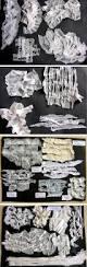 best 25 gcse biology past papers ideas on pinterest gcse