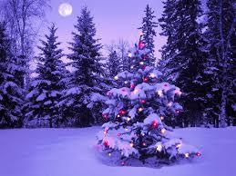 outdoor christmas tree ball lights u2013 home interior plans ideas