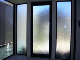 Privacy Cover For Windows Ideas Amusing Front Door Window Privacy Ideas Contemporary Ideas House