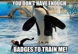 Whale Meme - whales kill the hydra