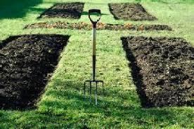 beautiful design ideas vegetable garden layouts brilliant mother