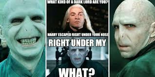 Makes No Sense Meme - harry potter 25 memes that show that voldemort makes no sense the