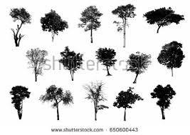 black tree silhouettes on white background stock photo 650600443