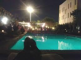 imagenes miami de noche foto de freehand miami miami beach noche en el area de piscina