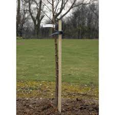 tree stakes tree stakes pressure treated timber poles johnstown garden