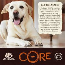 wellness core natural grain free dry dog food puppy health