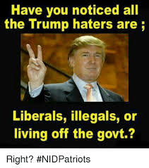 Haters Memes - 25 best memes about trump haters trump haters memes