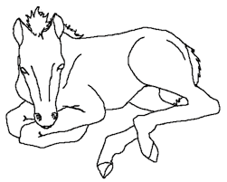 free printable horse coloring pages kids coloring pages baby