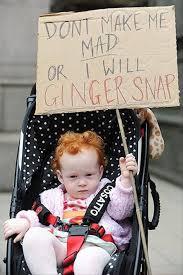 Ginger Snap Meme - ginger snap meme jax funnies pinterest ginger snaps and meme