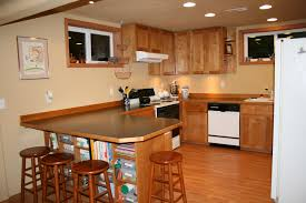 basement kitchen ideas small kitchen extraordinary basement kitchen ideas small basement bar