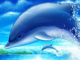 pictures of dolphins wallpapers 63 wallpapers u2013 hd wallpapers