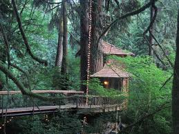 treehouse point fall city washington as seen on treehouse