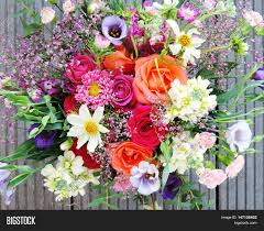multicolored spring flowers close image u0026 photo bigstock