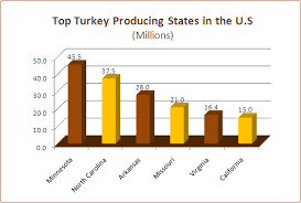 Top Turkeys For Thanksgiving Newsletter Thanksgiving Facts To Gobble Up