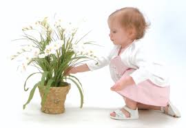 Poisonous Garden Flowers by Poisonous Flowers For Children Flowers Magazine