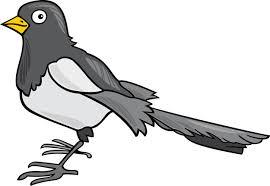 imagenes del animal urraca urraca de dibujos animados descargar vectores premium