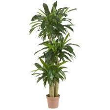 delightful ideas fake plants for living room creative design