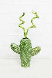 Cactus Planters by 25 Best Terrarium Images On Pinterest Plants Gardening And Mini