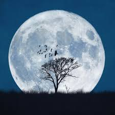 When Is Halloween In Usa When Is The Next Full Moon Date For November U0027s Frost Moon And The
