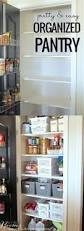 Diy Kitchen Pantry Ideas by 959 Best Kitchens Images On Pinterest Kitchen Ideas Kitchen And