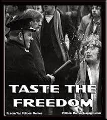 Freedom Meme - political memes taste the freedom
