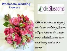 wholesale flowers online 28 wholesale flowers online wholesale flowers for weddings