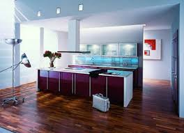 floor and decor cabinets wood floor modern purple kitchen cabinets designs ideas home