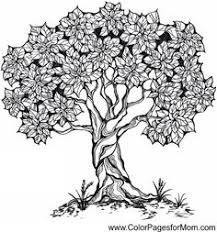 coloring pages for adults tree tree river nature scene coloring page coloring for adults by