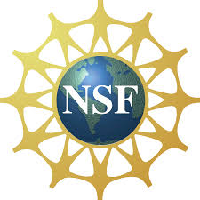 national science foundation wikipedia