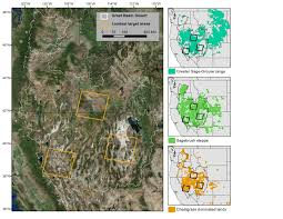 great basin native plants great basin landscape conservation cooperative fleishman et al