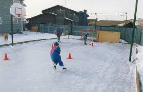 backyard hockey rink game outdoor furniture design and ideas