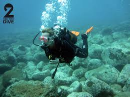 Montana snorkeling images 12dive diving tenerife at montana amarilla padi 5 sterren duik jpg