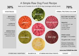 homemade raw food recipe for dogs