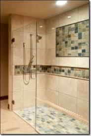 Ada Shower Door Excellent Handicap Shower Door Contemporary The Best Bathroom