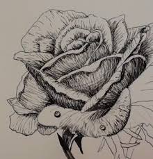 how to draw a rose in pen and ink u2014 online art lessons