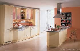 Orange Kitchens Ideas Modern Light Wood Kitchen Cabinets Pictures U0026 Design Ideas