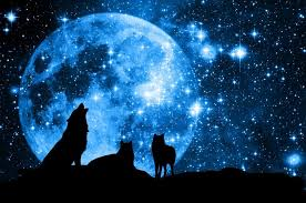 wolf moon january is here what can your crystals do